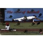 2015 Historic Autographs The Art of Baseball Box