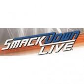 2019 Topps WWE Smackdown Hobby Box